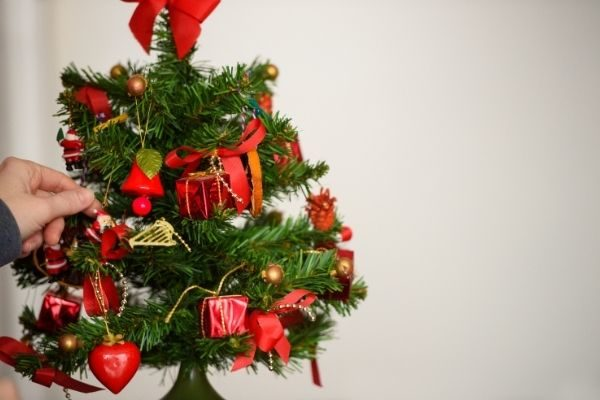 donate a tree as holidays activities for adults